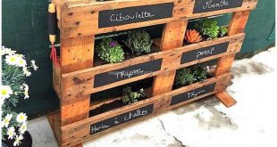 Trending Plans Made with Used Shipping Pallets