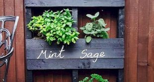50 Inspirierende DIY-Projekte Ideen für Palettengärten