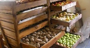 Root cellar storage/ what to do AFTER harvest… Great idea for bulk storage, to