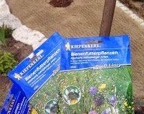 So legt man eine Wildblumenwiese an. Schritt für Schritt - einfach erklärt. So...